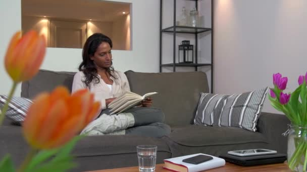 Husband Giving Wife Birthday Present Anniversary Gift Surprise On Sofa Stock Footage