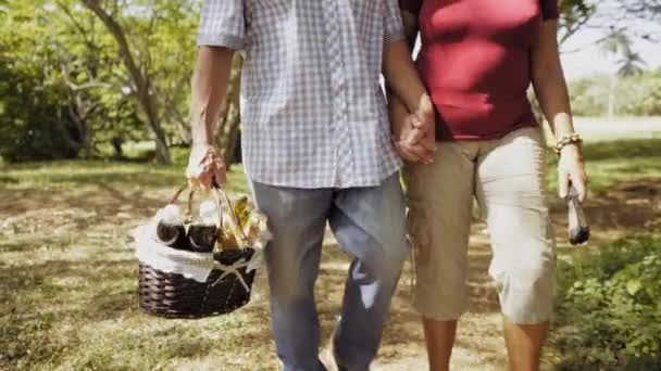2-Steadicam régi pár férfi és a nő csinál piknik