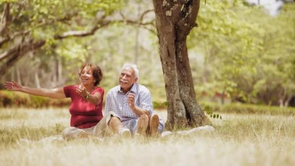 Starší pár 10prarodiče dělat piknik s mladým chlapcem Slowmotion