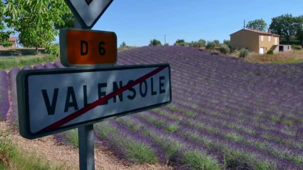 Vidéki ország francia táj-, levendula mezők, a franciaországi Provence