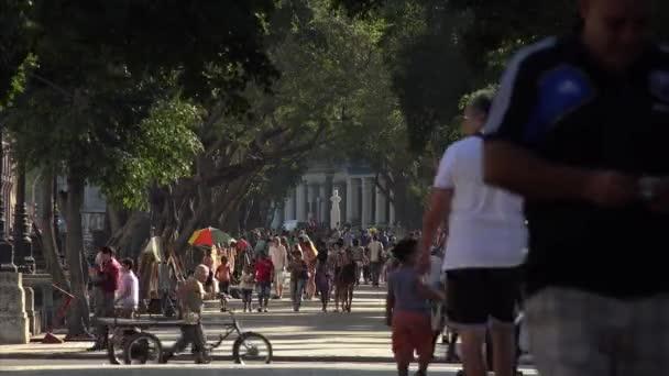 Cuba La Habana Havana People Walking Along Prado Park