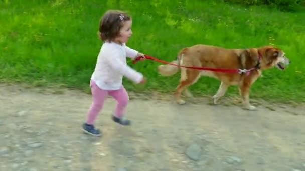 Dítě děti malá holčička s Pet zvířat pes venku