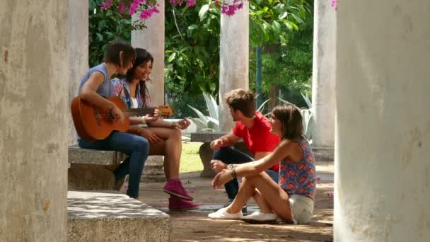 11 Young People Friends Students Laughing Singing Playing Guitar Music