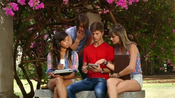 16 Group Of College Students Friends Young People Studying