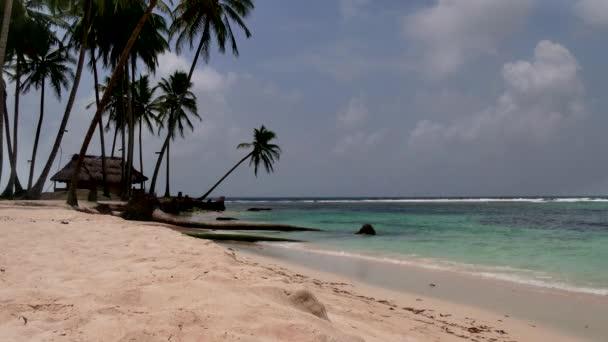 San Blas ostrovy Panama moře Ocean Beach Paradise palmy