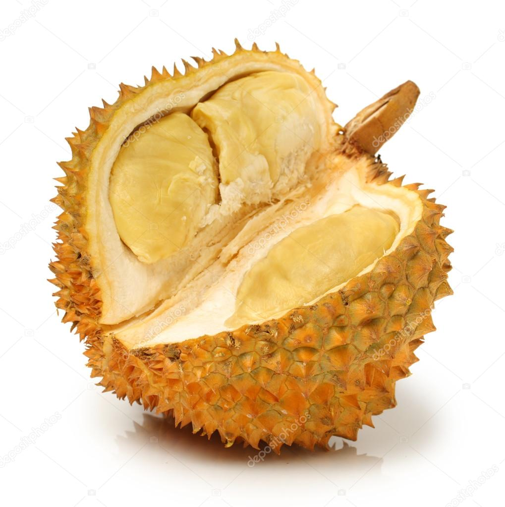 Durian fruit  - south east asia