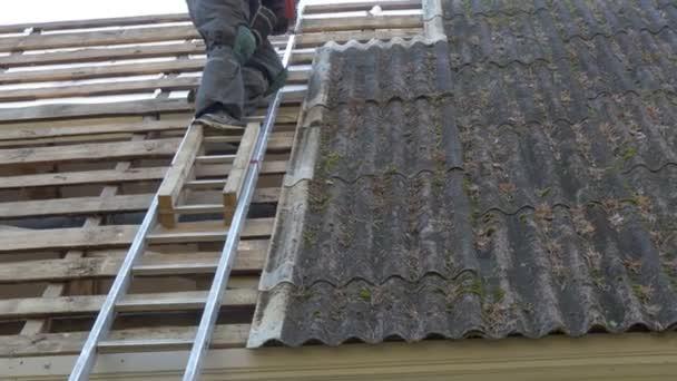 ein Dachdecker auf der Leiter steigt von der Dachplatte