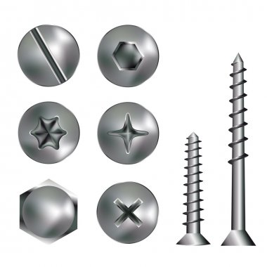 Silver screw heads