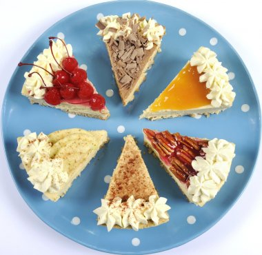 Thanksgiving slices of pie