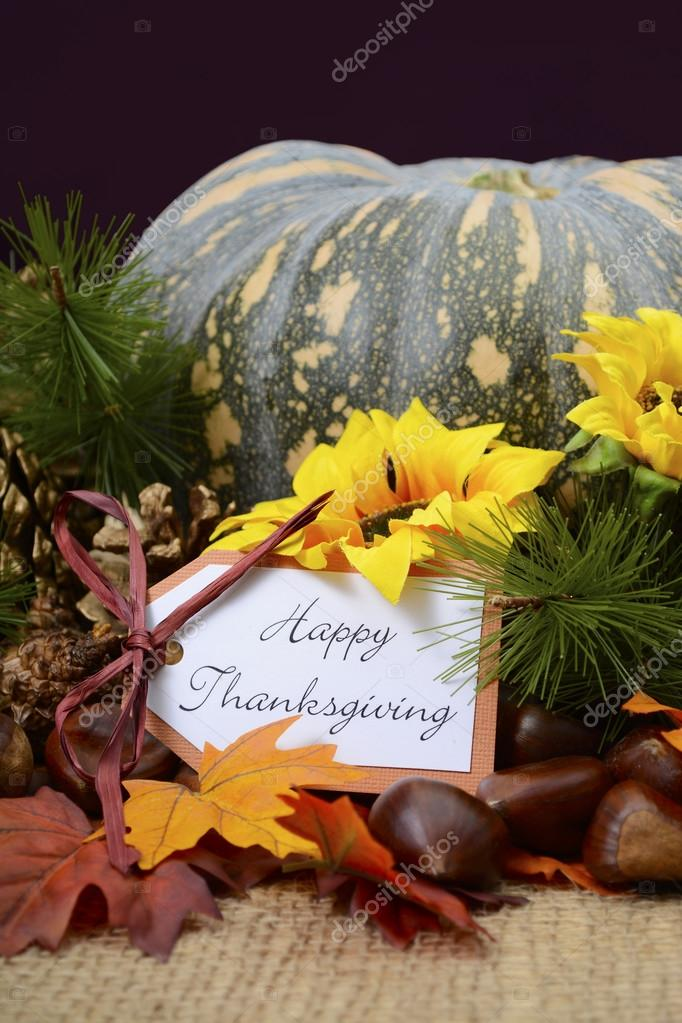 Happy Thanksgiving Pumpkin In Rustic Setting Stock Photo