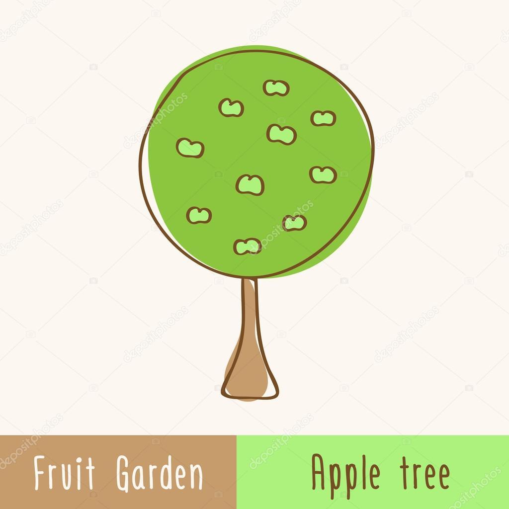 Garden fruit trees - single Apple tree