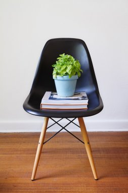 Contemporary black dining chair with basil plant and books