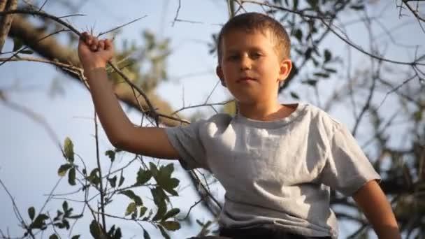 dorato tardo pomeriggio telai leggeri giovane ragazzo seduto nella struttura ad albero