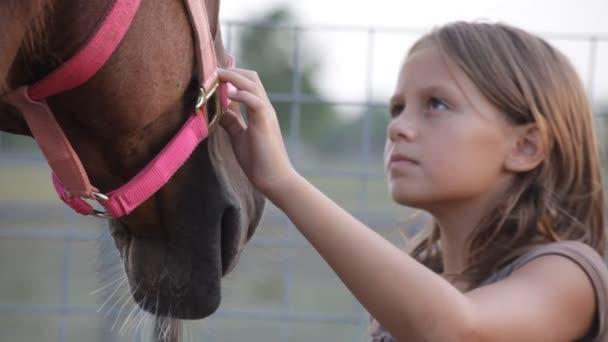 Mladá dívka štětce za hřívu koně