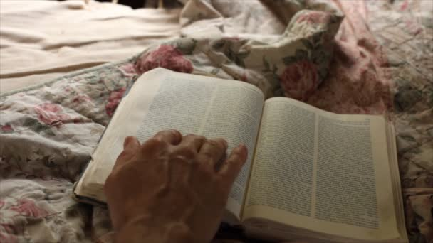 čtení knihy okna světlem