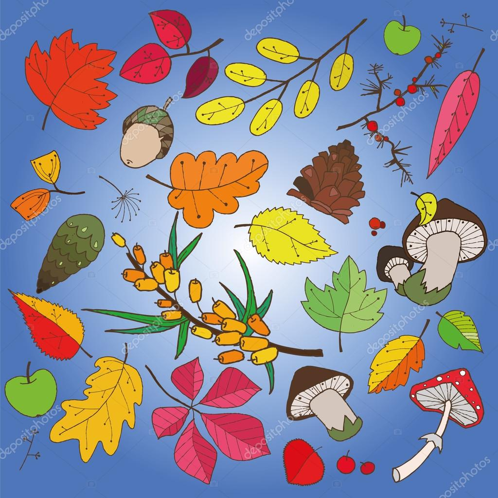 Pattern of colorful autumn leaves can be used as a background, card, business card and picture
