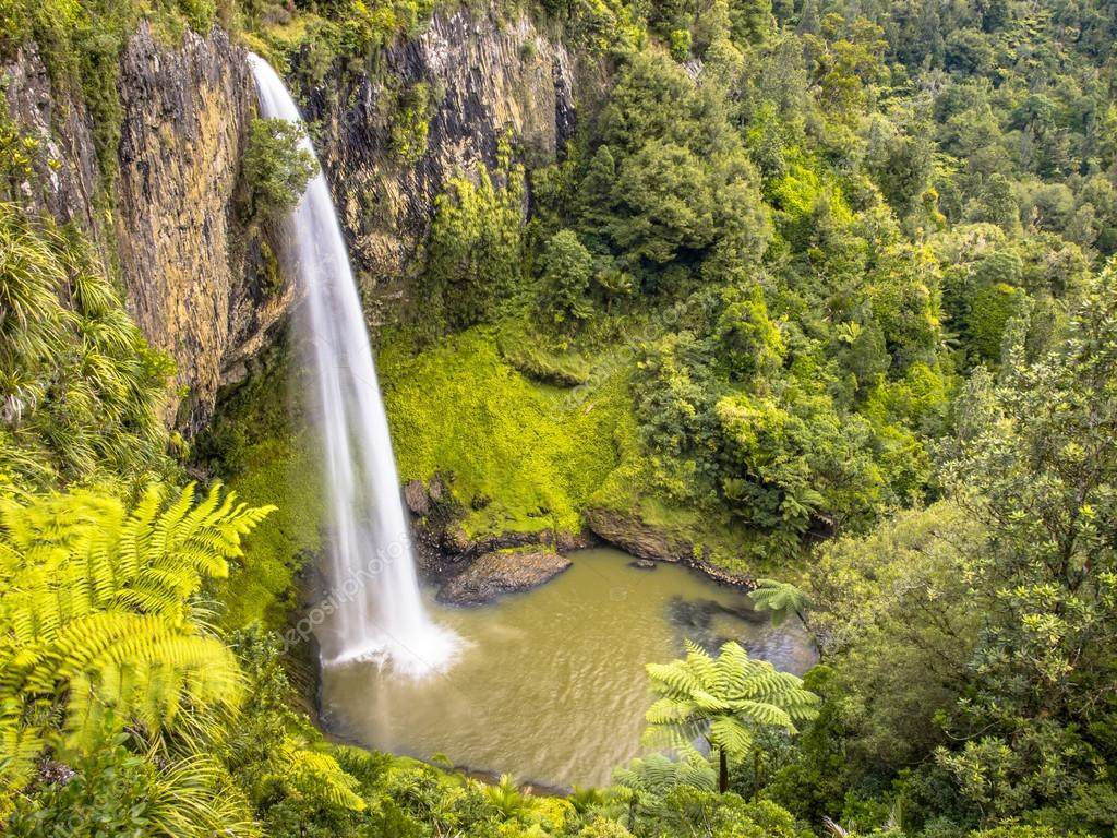 Jungle Waterfall in Lush Rain Forest, New Zealand