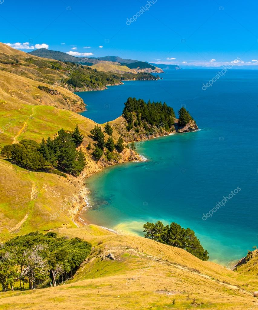 Blue water at Marlborough Sounds, South Island, New Zealand