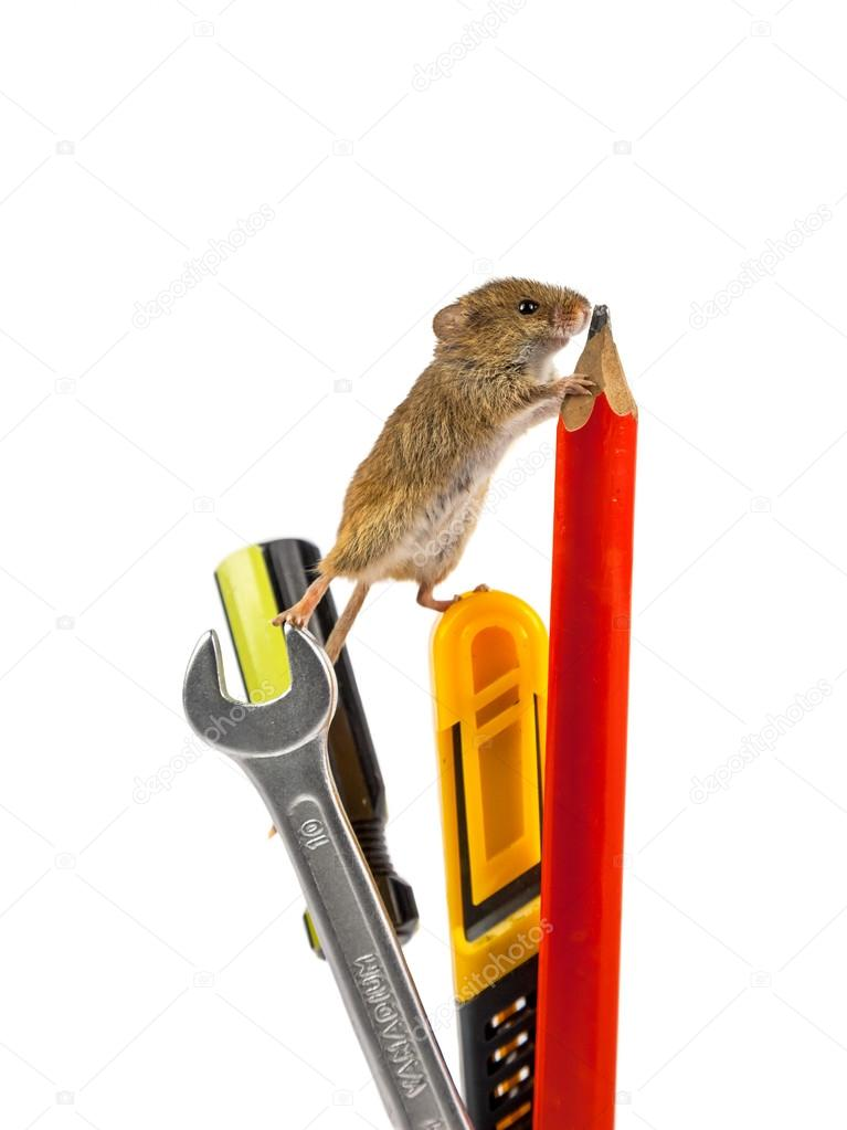 Tools with mouse
