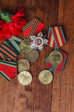 Order of the Patriotic War in St. and Medals for the victory over Germany in the Great Patriotic War  41-45 on a wooden table.  close up. selective focus image stock vector