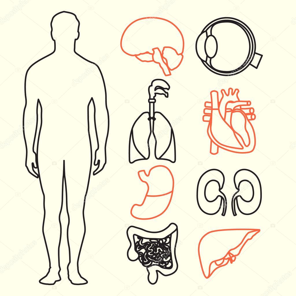 flaches design ikonen f r medizinischen thema menschliche. Black Bedroom Furniture Sets. Home Design Ideas