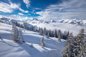 Alberi coperti da neve in montagne Alpine