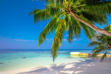 Tropical island with sandy beach