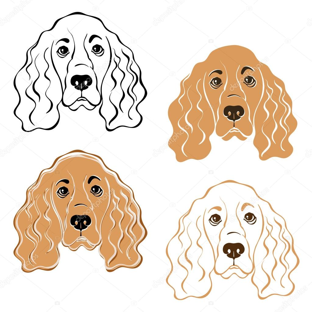 Caras De Perro Para Colorear Cara De Perro Cocker Spaniel Vector