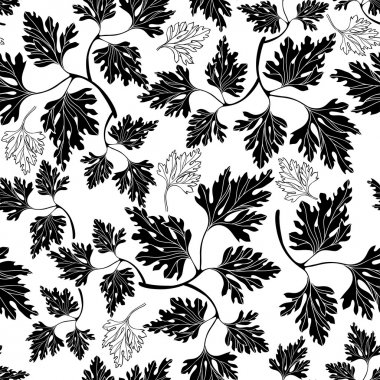 Seamless pattern with parsley.