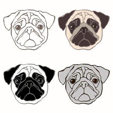 Set of pug's face