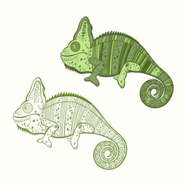 Two green chameleons