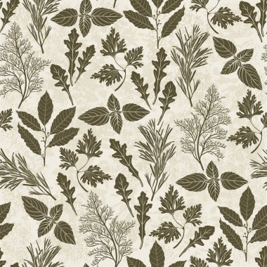 Pattern with culinary herbs