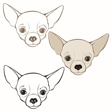 Set of  chihuahua's faces