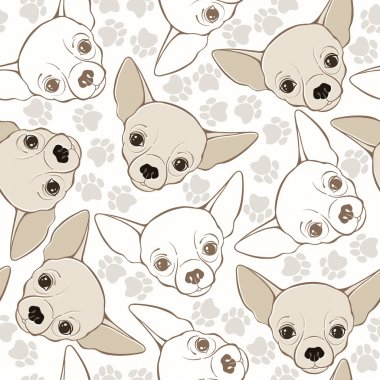 Pattern with chihuahua-dogs