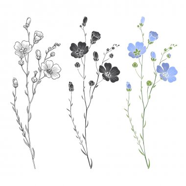 Floral seamless flax plants