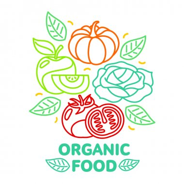 Set of organic food fruit and vegetable logo card templates