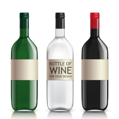 Realistic glass bottles empty transparent set