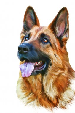 Drawing of the dog German Shepherd Dog