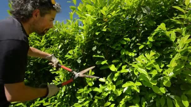 Springtime home gardening.