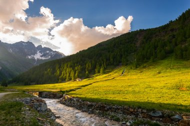 Stream flowing through blooming alpine meadow and lush green woodland set amid high altitude mountain range at sunsets. Valle d'Aosta, Italian Alps.