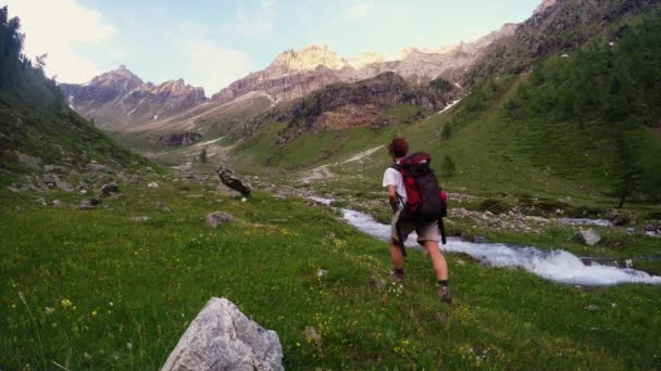 Backpacker hiking in idyllic landscape. Summer adventures and exploration on the Alps, through blooming meadow and green woodland set amid high altitude mountain range. Valle dAosta, Italy.