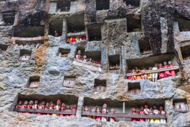Lemo (Tana Toraja, South Sulawesi, Indonesia), famous burial site with coffins placed in caves carved into the rock, guarded by balconies of dressed wooden statues, images of the dead persons (called tau tau in local language). stock vector
