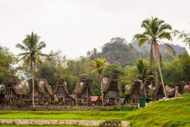 Traditional village, Tana Toraja