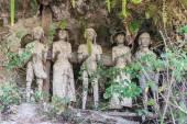 Tradiční pohřebiště v Tana Toraja
