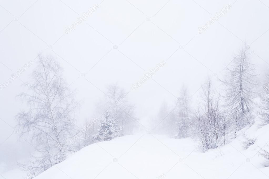 Dreamy winter environment