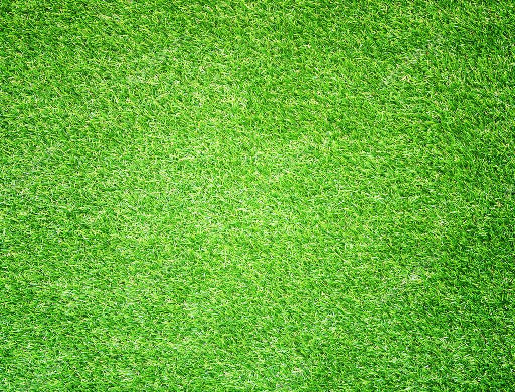 Зеленый фон на фото как называется