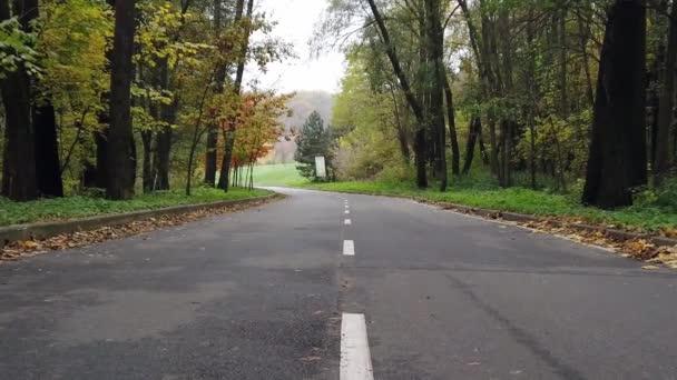 Pomalá procházka první osobou po asfaltové uličce v parku na začátku podzimu