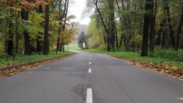 Pomalá první osoba kráčející po asfaltové uličce v parku na začátku podzimu