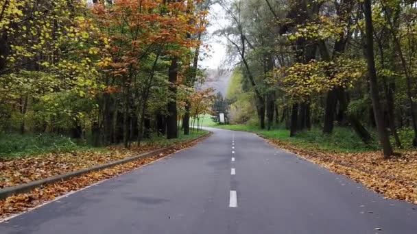 First-Person Procházka podél parku asfaltové uličky na začátku podzimu