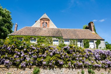 Beautiful wisteria cottage in rural France